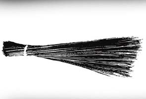 broom-aap-party-symbol-decoded