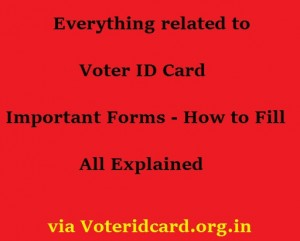 Voter ID – Complete Guide to Get Answers and Solutions to All your Queries